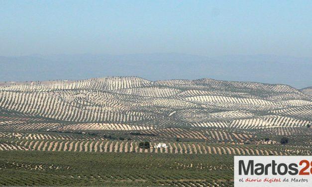 COAG Jaén advierte de déficit hídrico en la provincia
