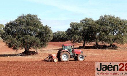 La Junta solicita ampliar el plazo de ejecución de las obras del Plan de Empleo Agrario al 31 de diciembre