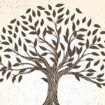 """El Primer Encuentro Virtual de """"Escritores por Jaén"""" que organizan Másquecuentos, la editorial Líberman y Ferias Jaén se celebrará el 14 de junio"""